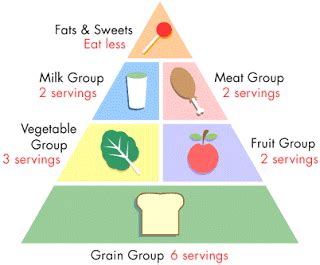 Food and nutrition essays - Draufhau Verlag